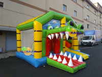 Inflatable Playground with Crocodile Slide 5.8x5x3m