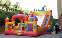 Giant Dolphin Inflatable Playground 12x6x6m