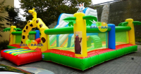 Giant Zoo Inflatable Playground 10x10x5m