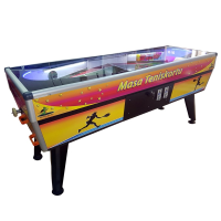 Table Tennis Court with Coin