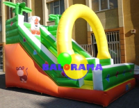 Tiger Inflatable Water Slide 6x4x6m